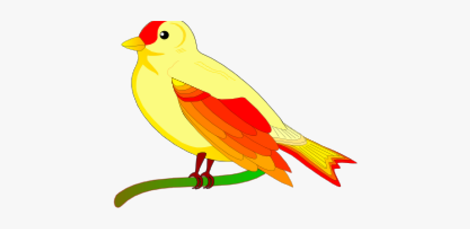Peace Clipart Burung.