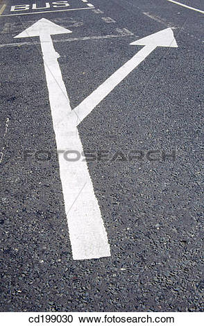 Stock Photography of Bus lane and traffic lane arrows cd199030.