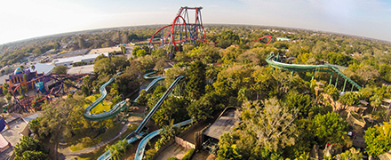 Vacation Packages at Busch Gardens® Tampa Bay.