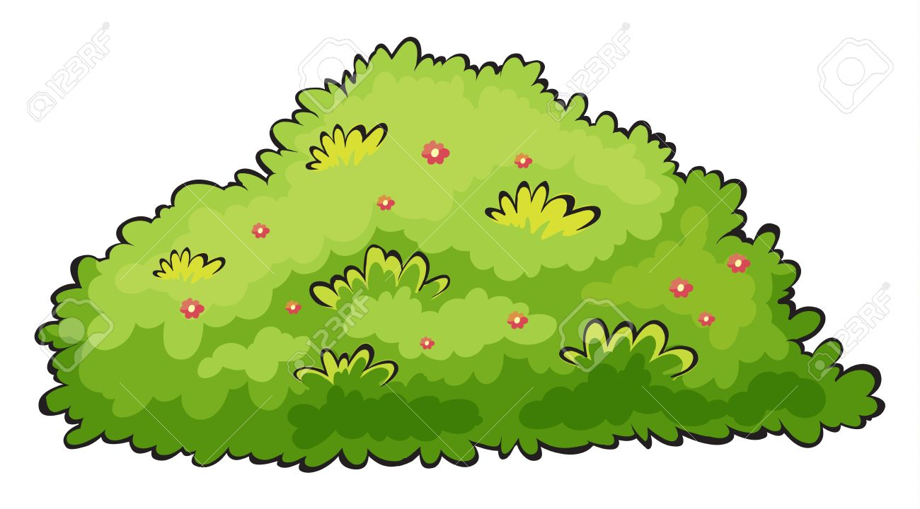 Illustration Of A Green Bush On A White Background Royalty Free.