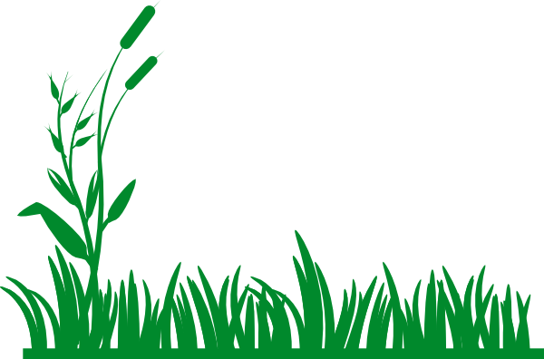 Grass and bushes clipart.