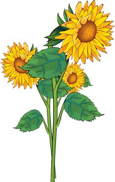 Grab This Free Summer Flower Clip Art.