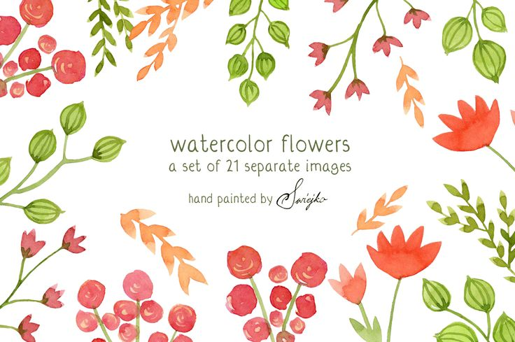 Watercolor Flowers, Floral.