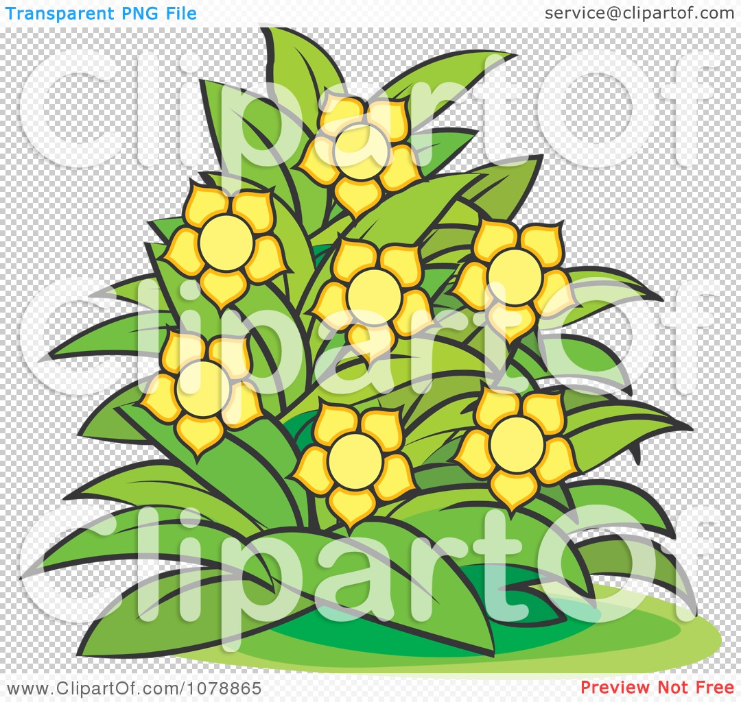 Clipart Bush With Yellow Flowers 2.
