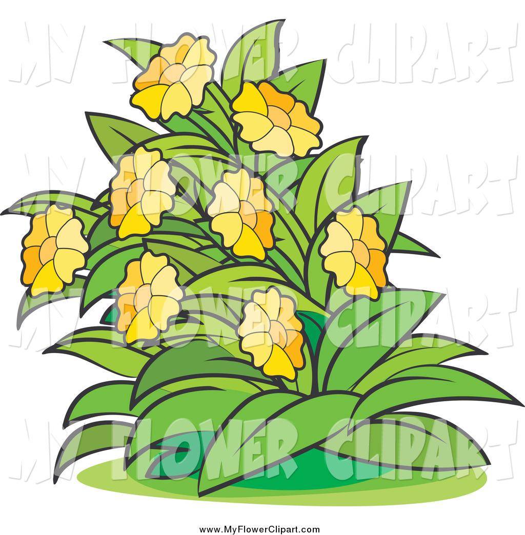 Flower Bush Clipart.