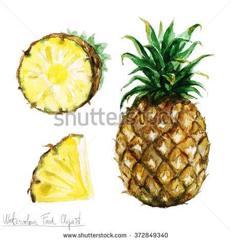 Pineapple Bush Stock Photos, Royalty.