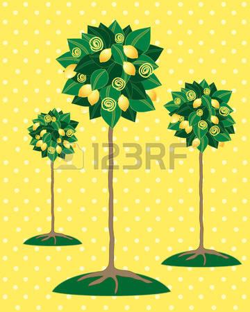 Bush Fruit Stock Illustrations, Cliparts And Royalty Free Bush.