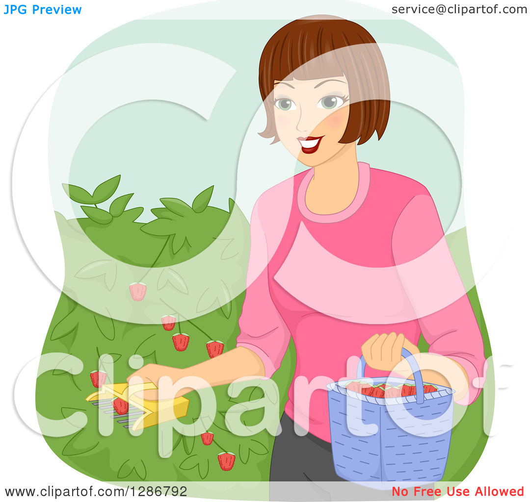 Clipart of a Happy Brunette White Woman Using a Fruit Picker to.