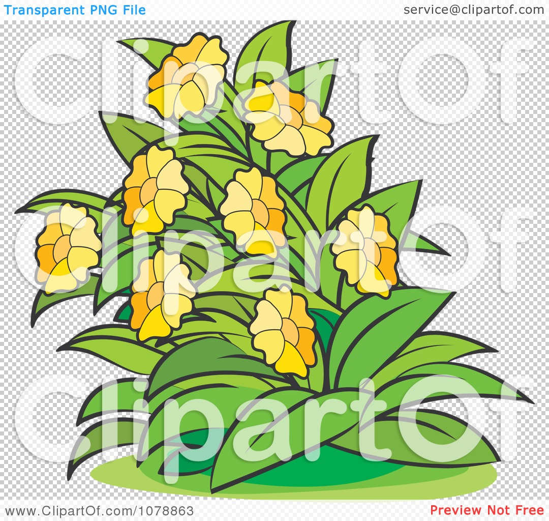 Clipart Bush With Yellow Flowers 1.