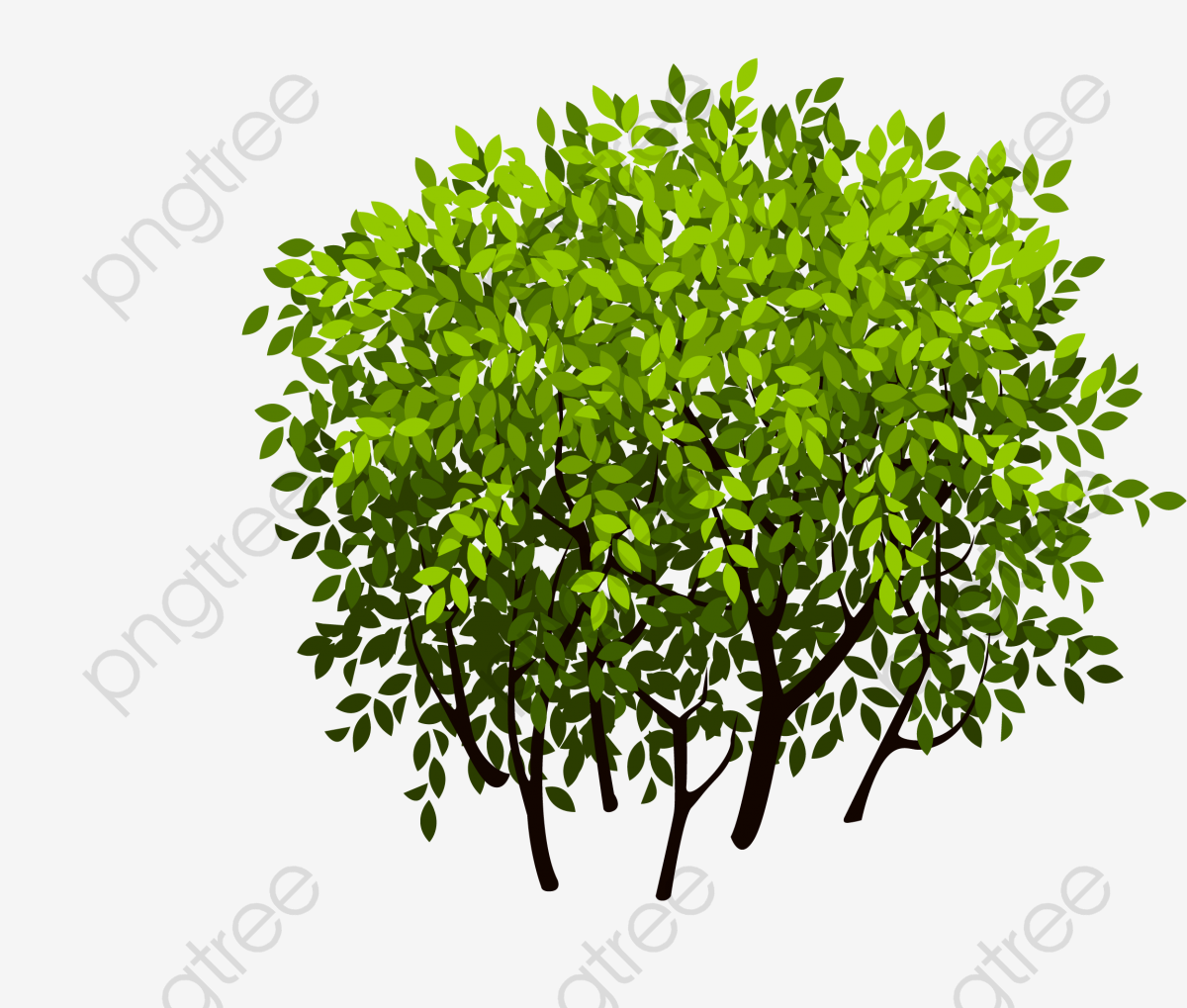 Bush, Bush Vector, Thicket PNG and Vector with Transparent.