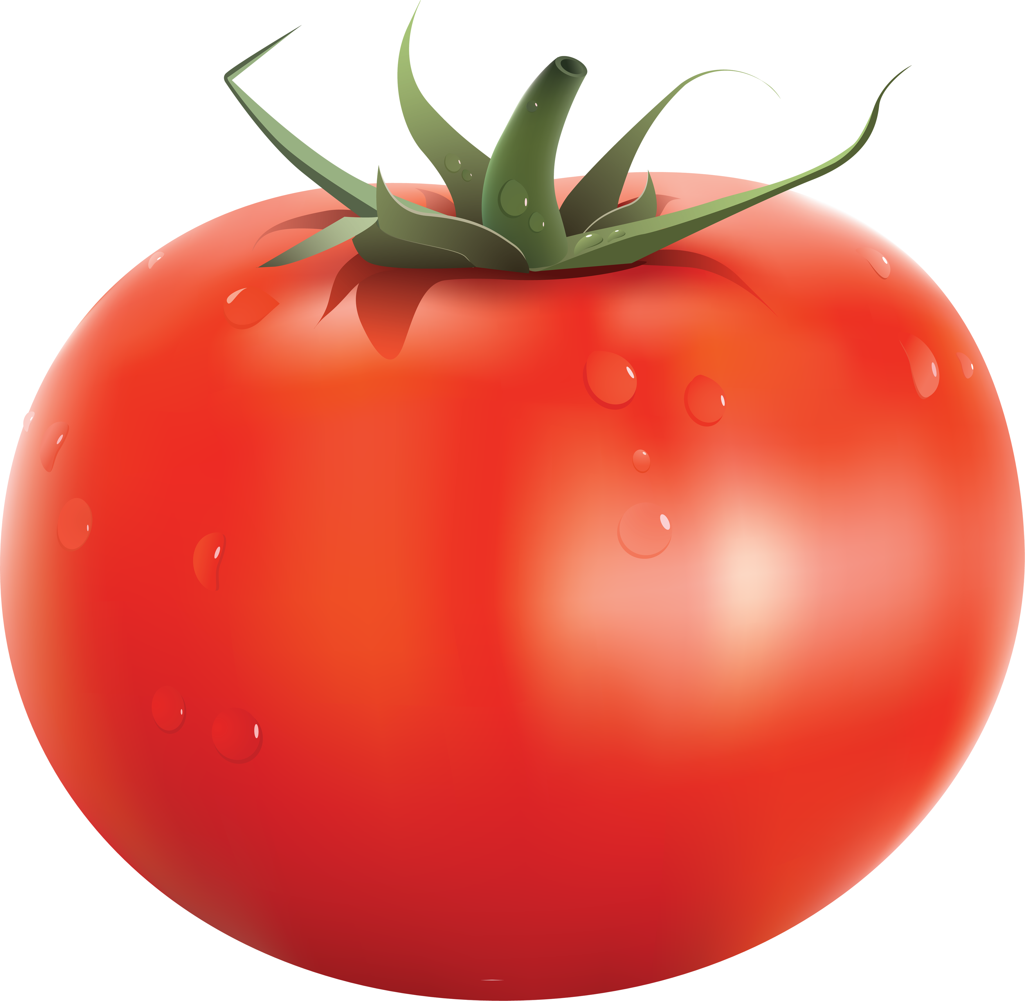 tomato clipart no backround #18