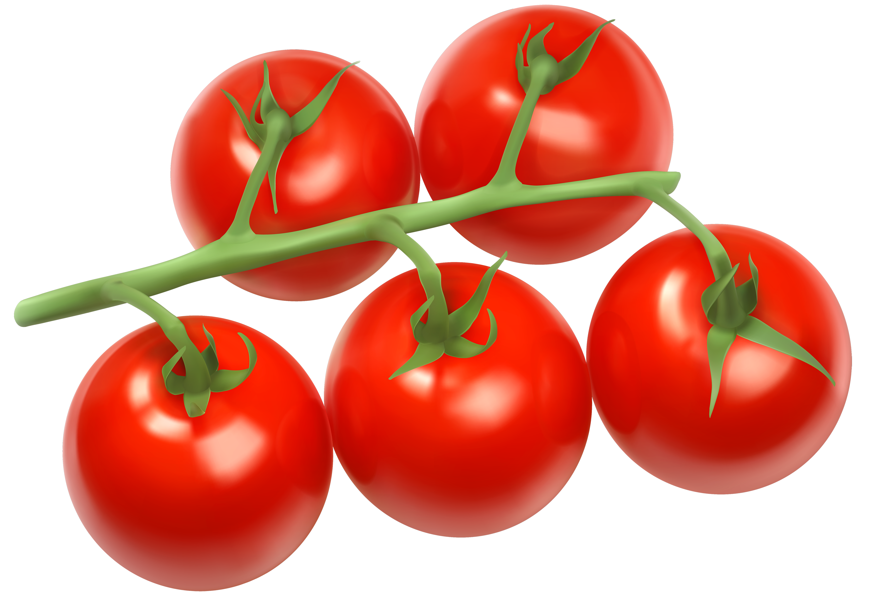 Tomatoes Branch PNG Clipart.
