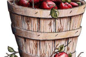 Bushel of apples clipart 1 » Clipart Portal.