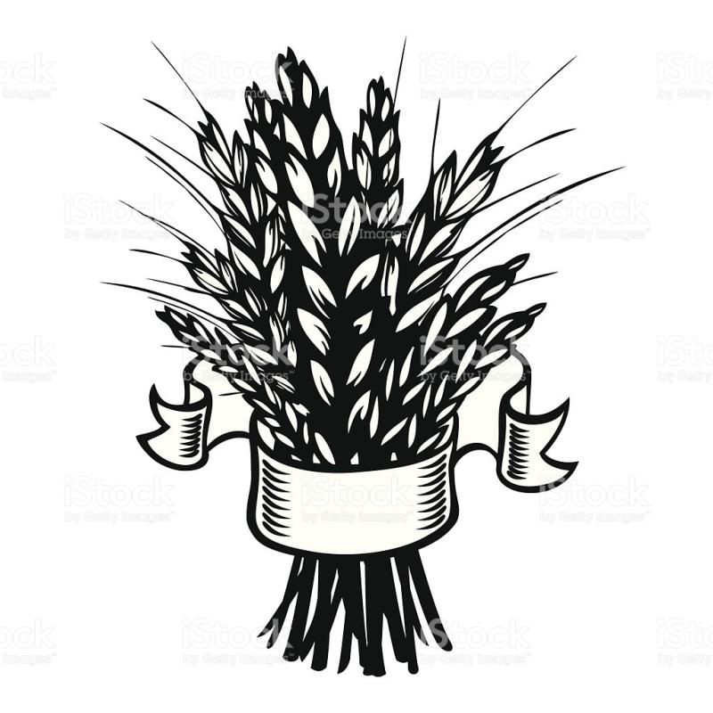 Bushel Of Wheat Clipart.