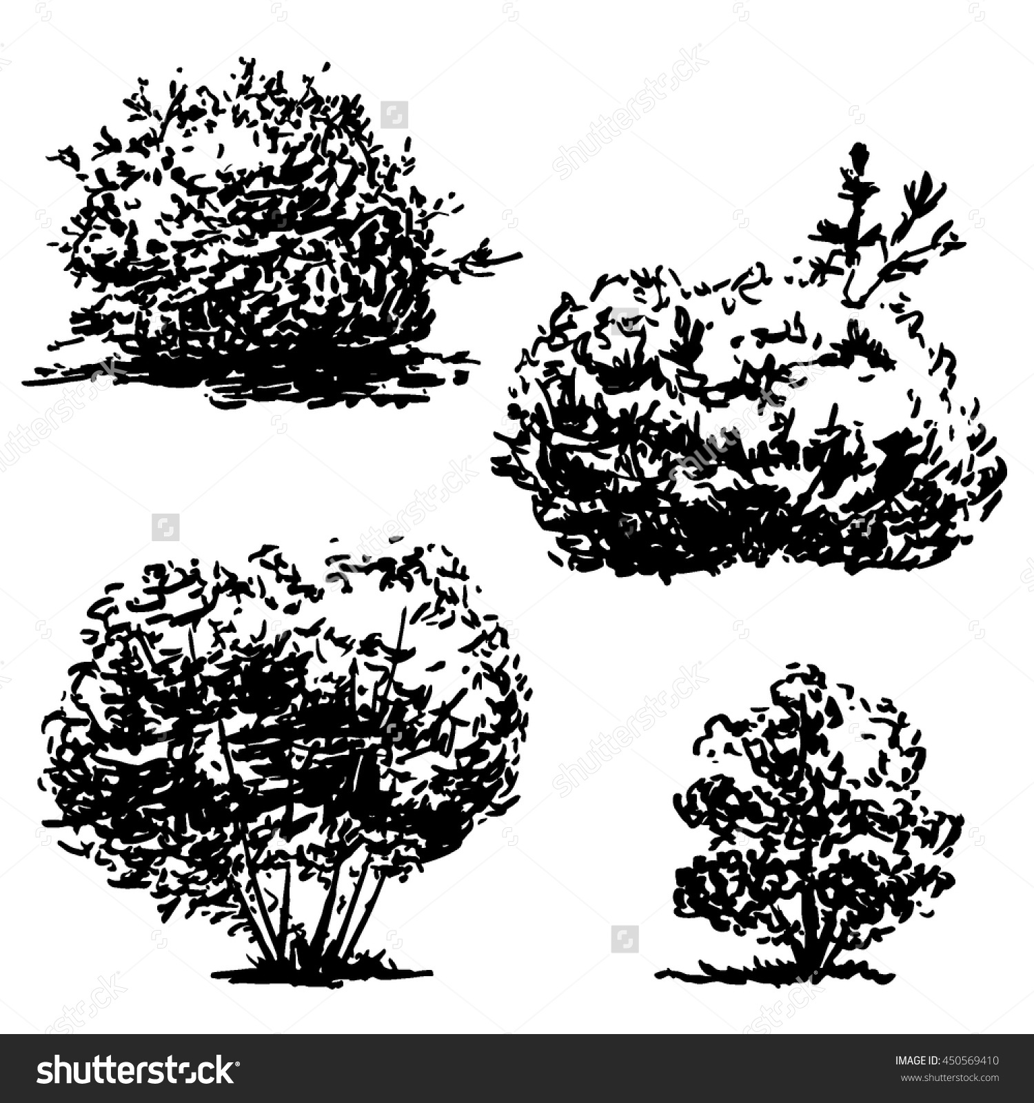 Set Four Hand Drawn Bushes Sketch Stock Vector 450569410.