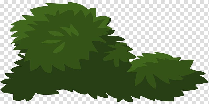 bushes transparent background PNG clipart.
