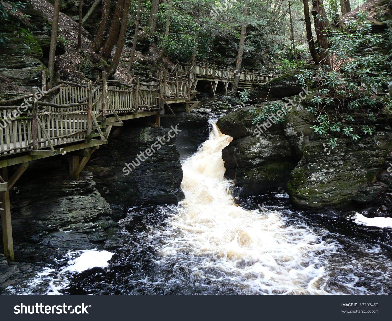 Bush Kill Falls Penn Usa Stock Photo 57707452 : Shutterstock.