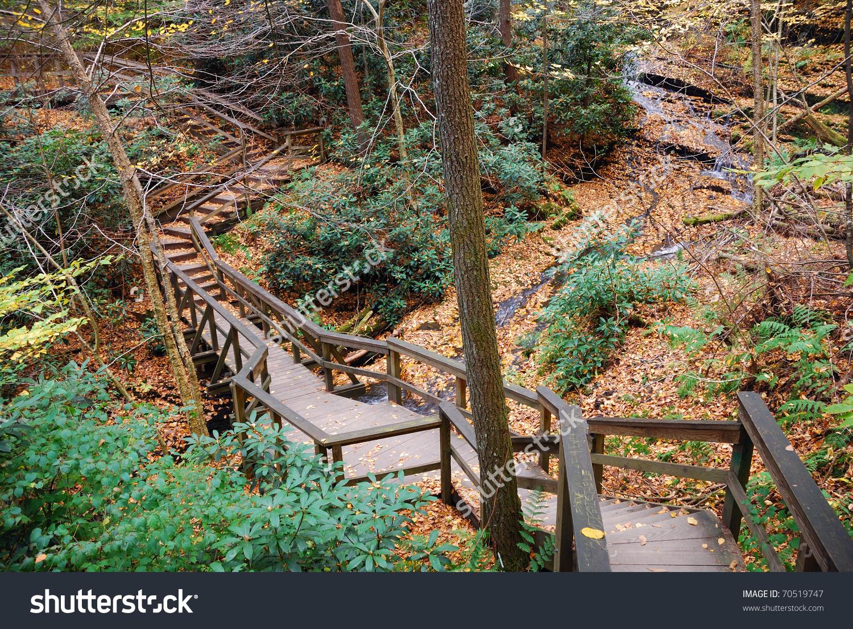 Autumn Hiking Trail Foliage Woods Bushkill Stock Photo 70519747.