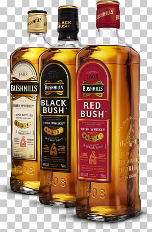 27 Old Bushmills Distillery PNG cliparts for free download.
