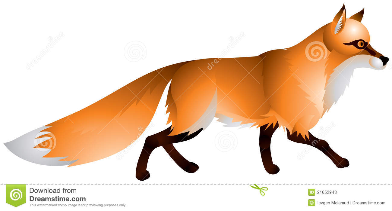 Fox With The Red Fur And A Bushy Tail Stock Photos.