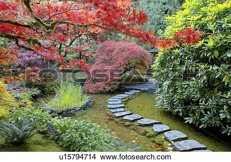 Stock Photo of Fall colour, the Japanese Garden, Butchart Gardens.
