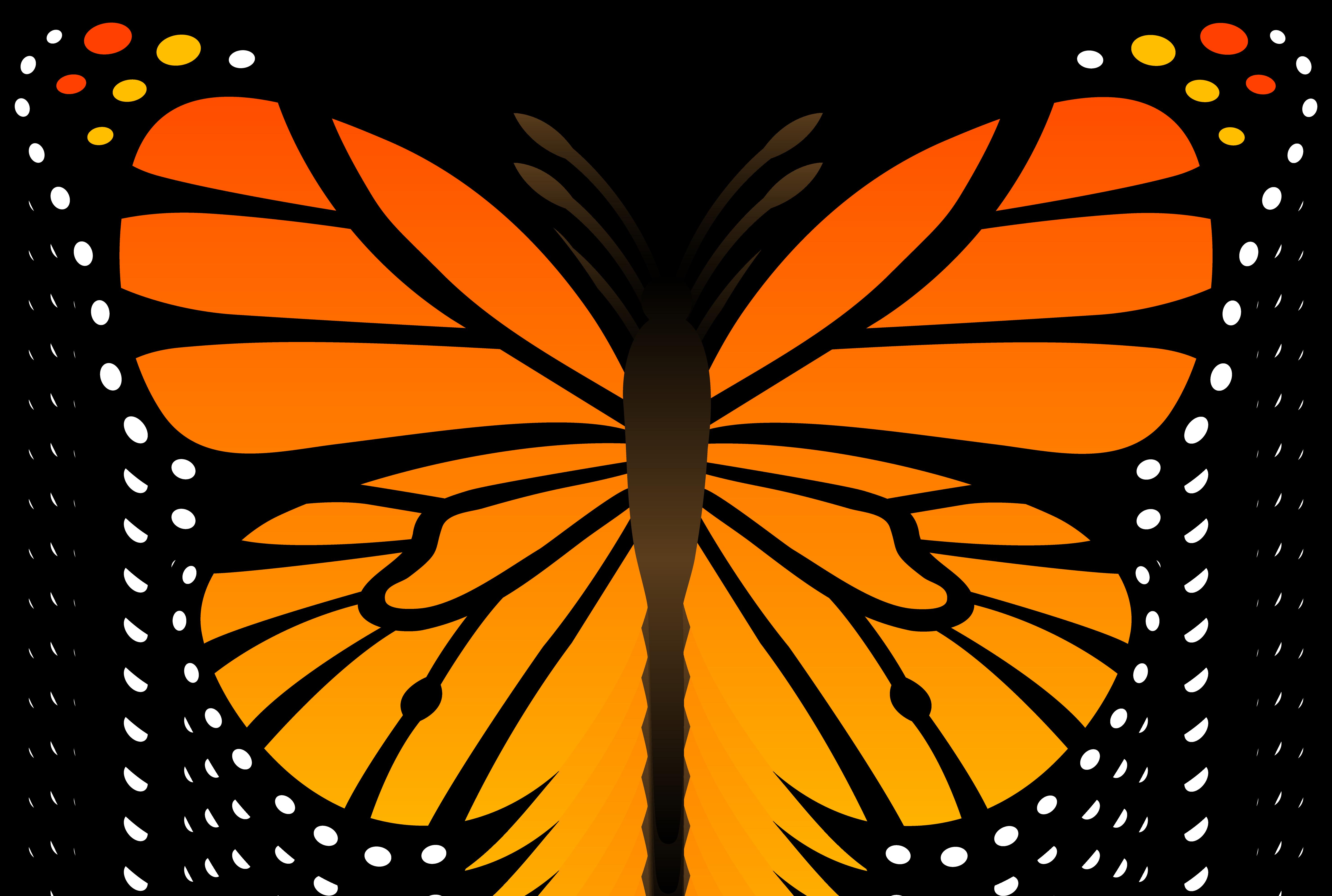 Butterflies Clipart & Butterflies Clip Art Images.