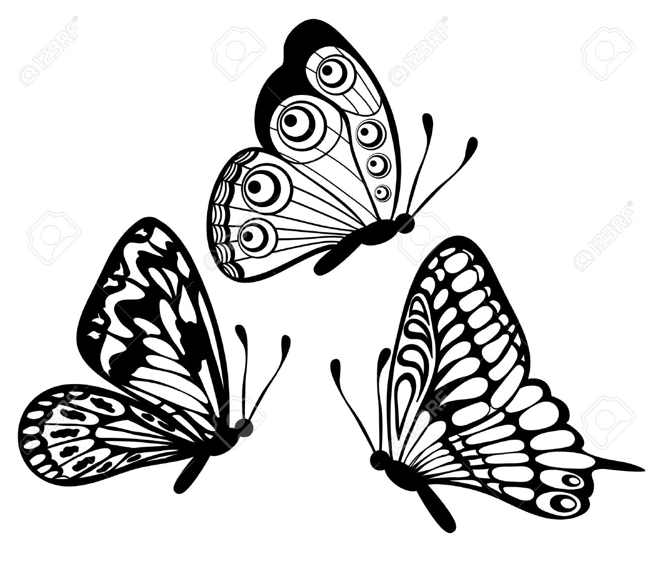 set of Beautiful black and white butterfly isolated on white.