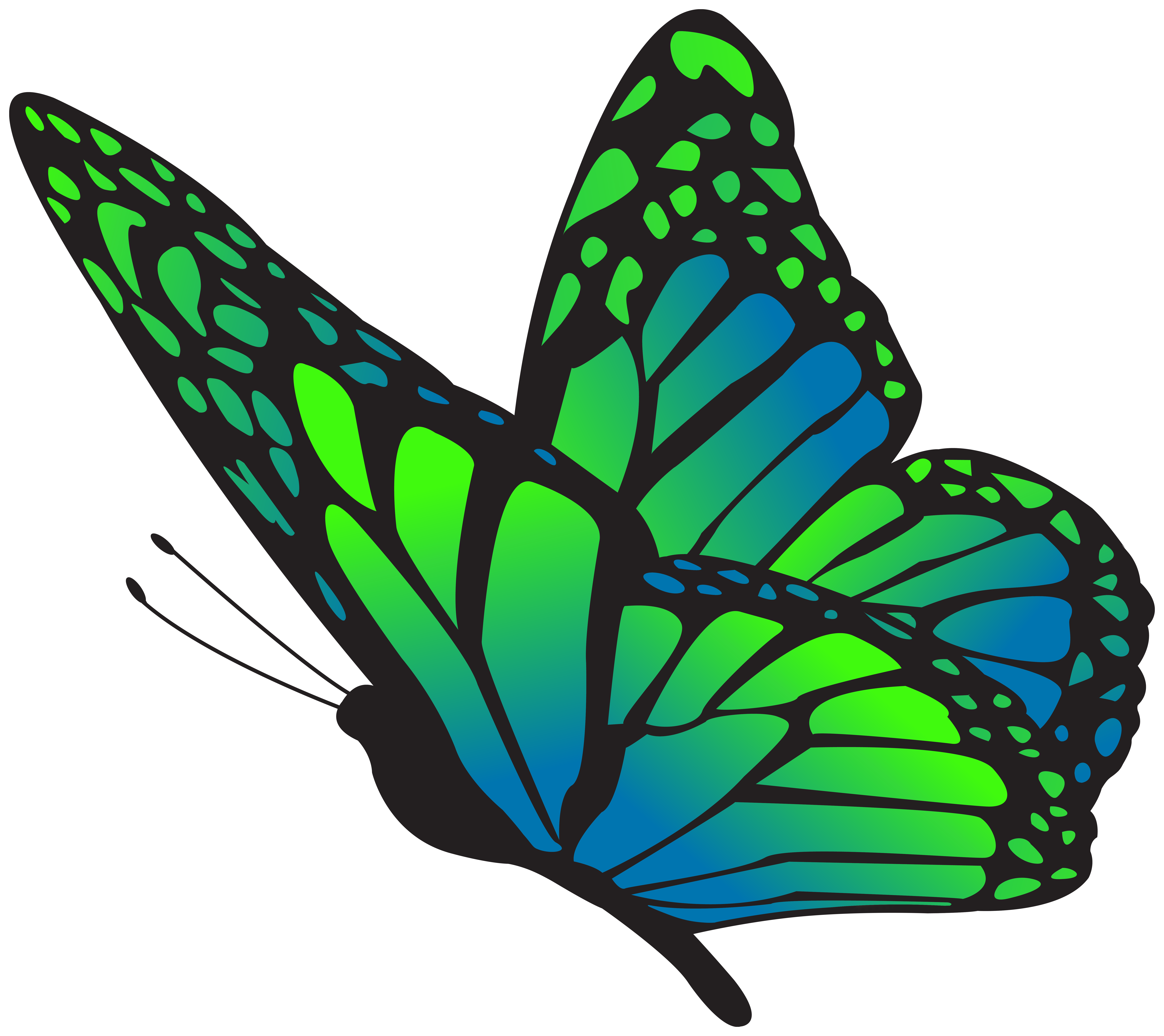 Butterfly Blue Green Clipart Image.