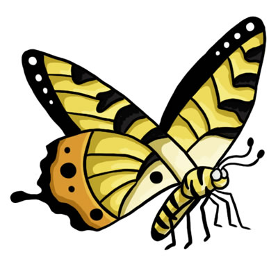 24 FREE Butterfly Clip Art Drawings and Colorful Images.