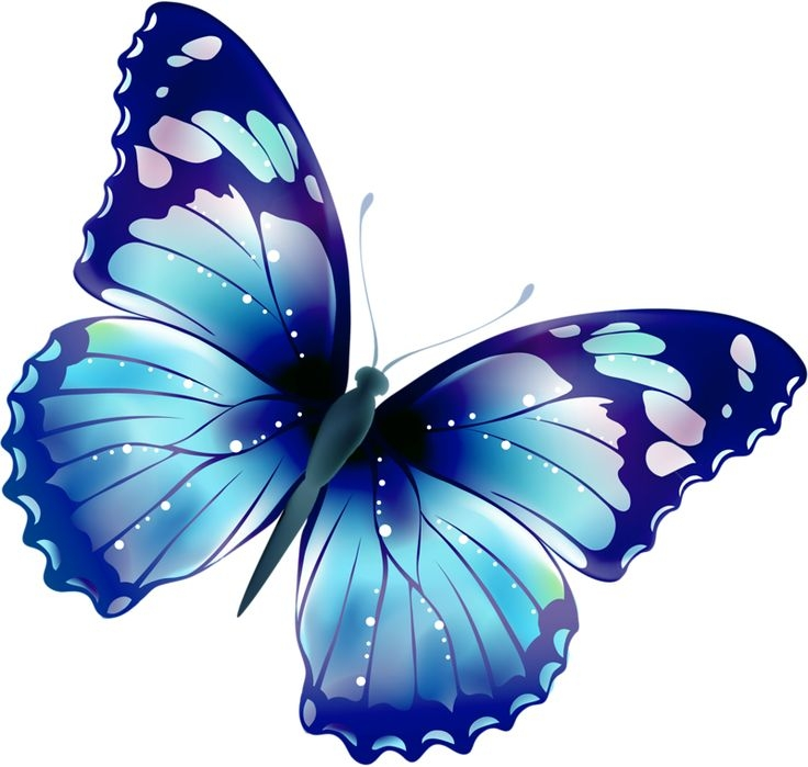 Free Butterfly Clipart & Butterfly Clip Art Images.
