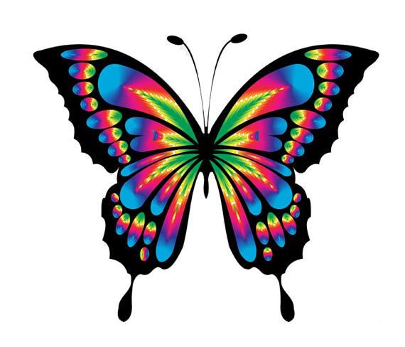 Bright Butterfly Tie Dye Cross Stitch Pattern Fun Pattern.
