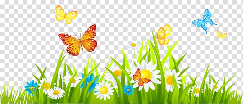 Flower , Grass Ground with Flowers and Butterflies.