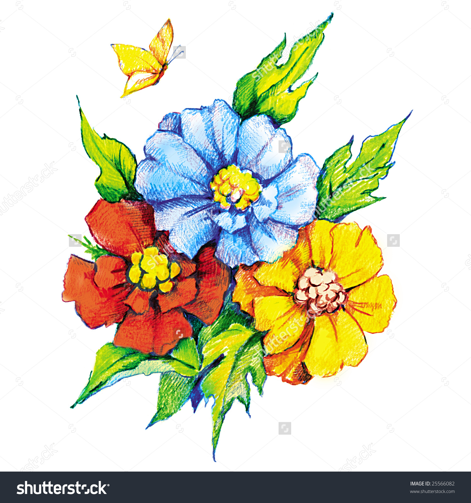 Beautiful Flowers Butterfly Colored Pencil Drawing Stock.