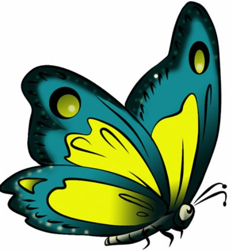 Butterfly Art Images.