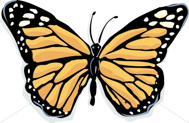 Butterfly Clipart, Butterfly Graphics, Butterfly Images.