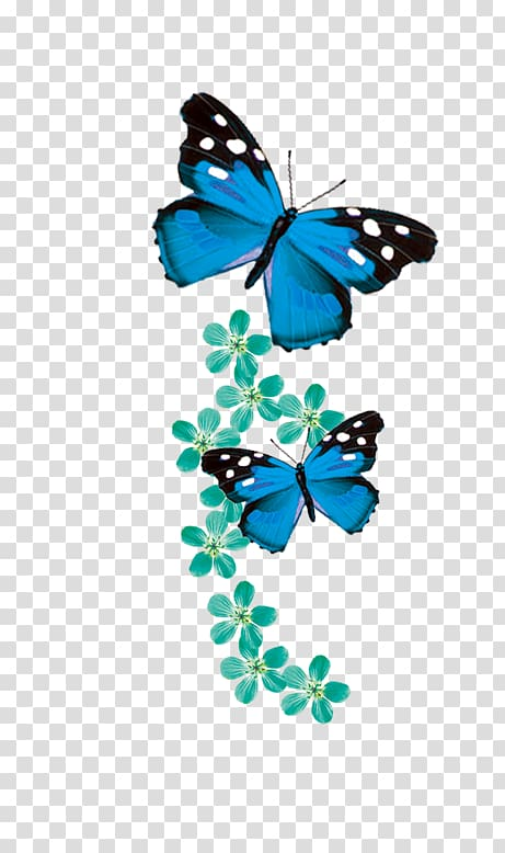 Monarch butterfly Blue, butterfly transparent background PNG.