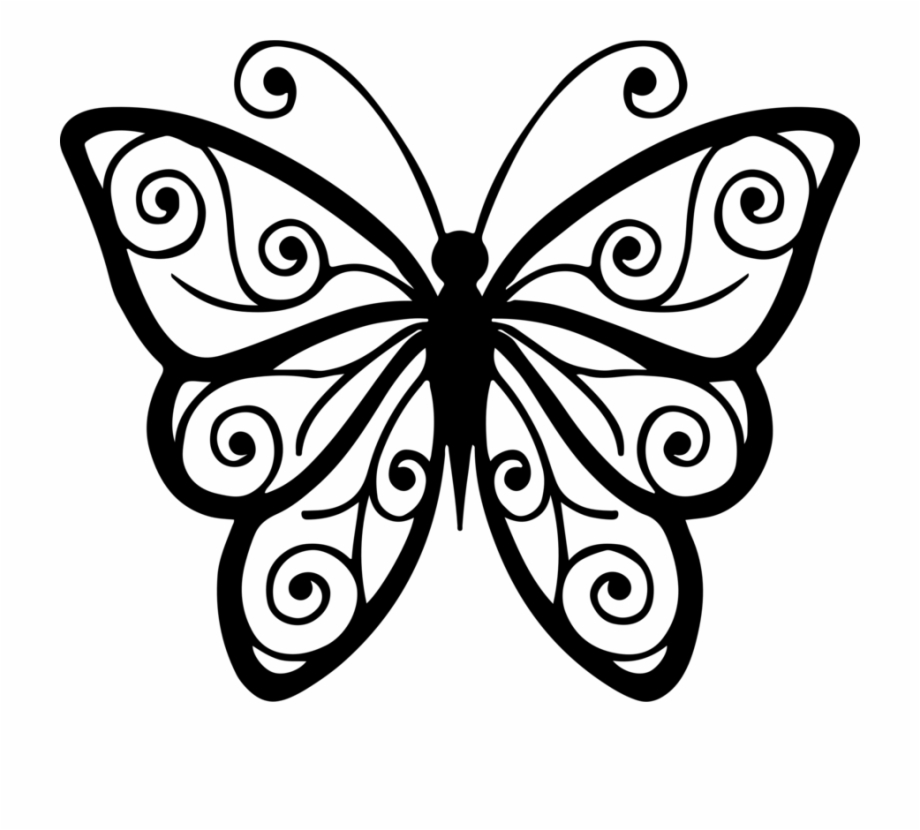 3 Clipart Butterfly.