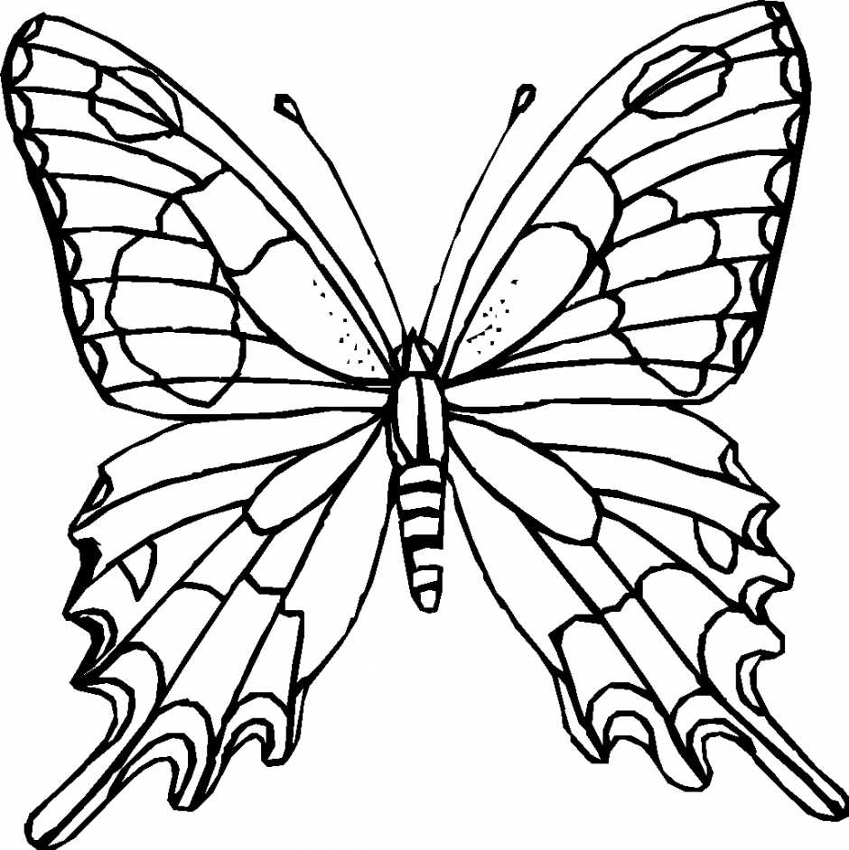 Best Butterfly Clipart Black And White #15160.