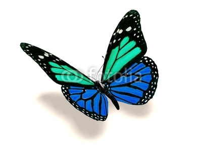 3D turquoise and blue butterfly Stock photo and royalty.