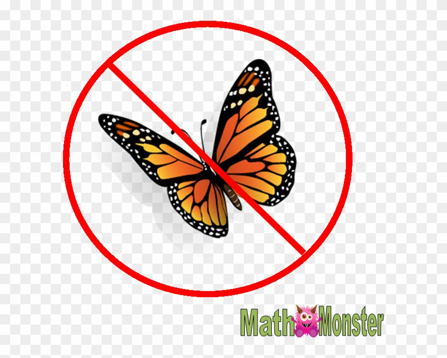 There Are No Butterflies In Math.