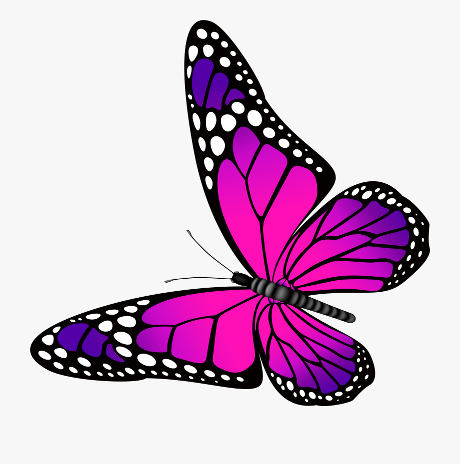 Pink And Purple Butterfly Clipart Clip Art Library.