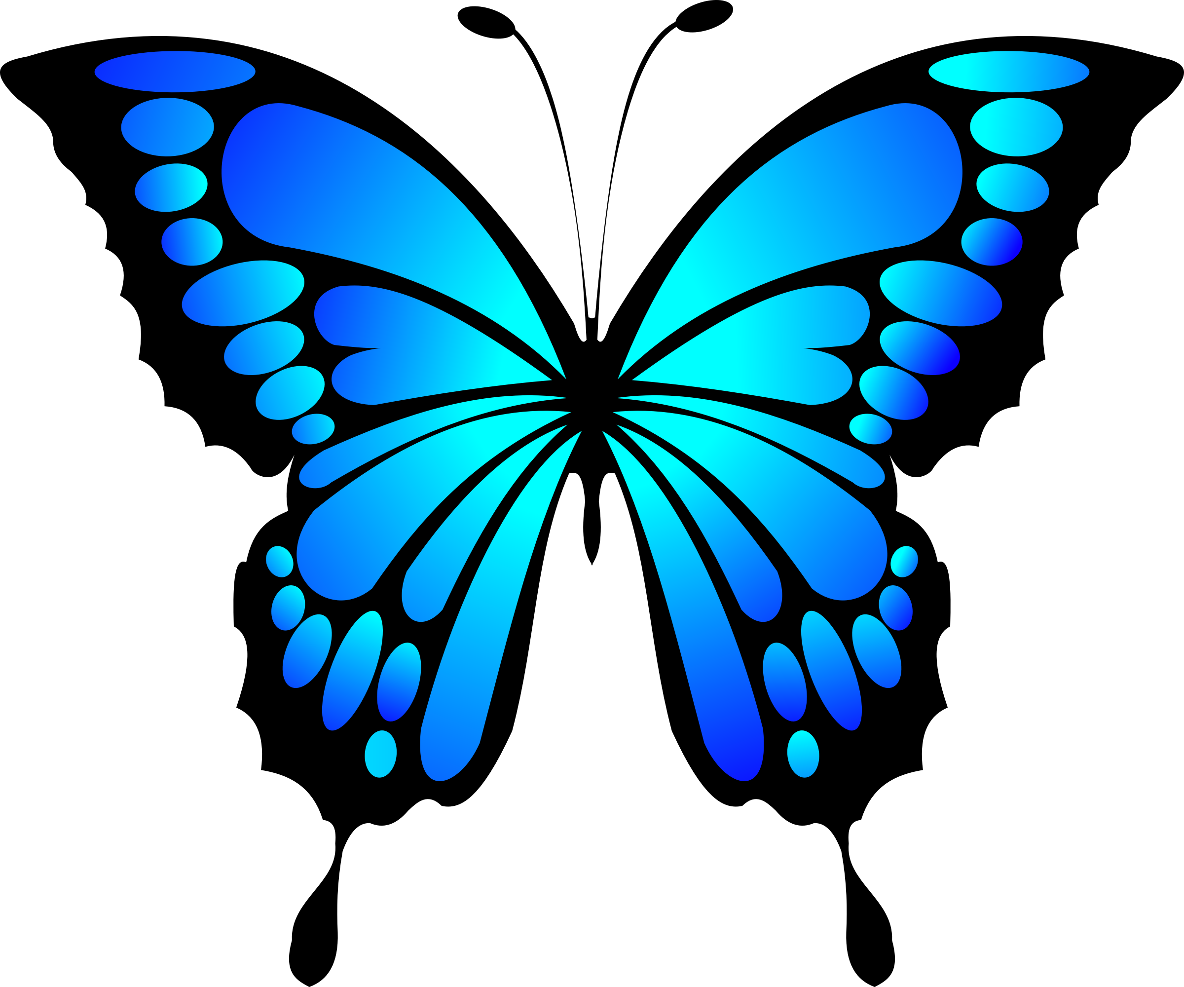 HD Blue Butterfly Cliparts The Cliparts.