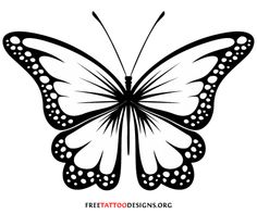 Black And White Butterfly Clipart & Look At Clip Art Images.
