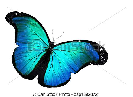 Flying Blue Butterfly Clipart.