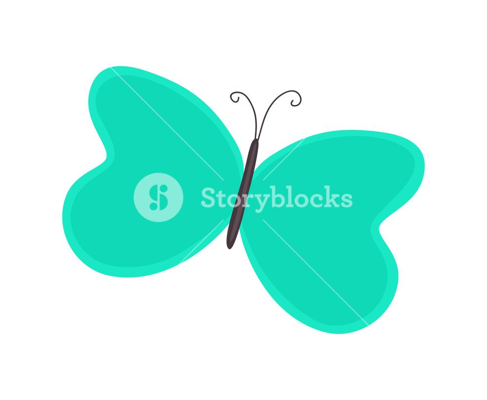 Cartoon Butterfly Clipart Royalty.