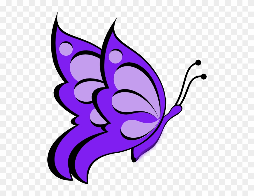 Easy Butterfly Drawing Clipart Drawing Sketch.