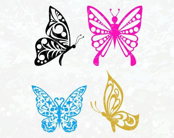Pin on Butterflies.