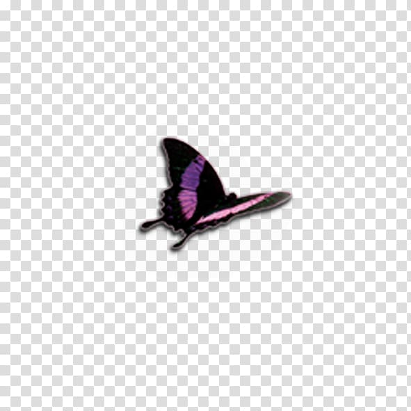 Butterfly Computer file, Red Butterfly transparent.