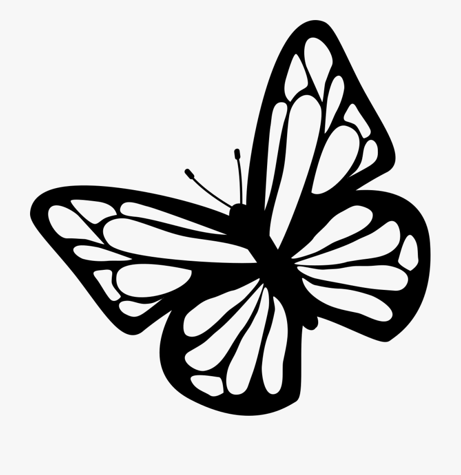 Butterfly Black And White Clipart Download Free Images.