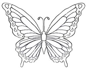 FREE Butterfly Coloring pages.